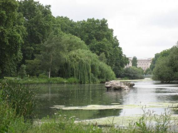 The long Water, entre Hyde Park et Kensington Gardens