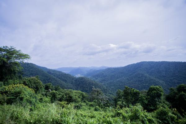 Parc National Khao Yai